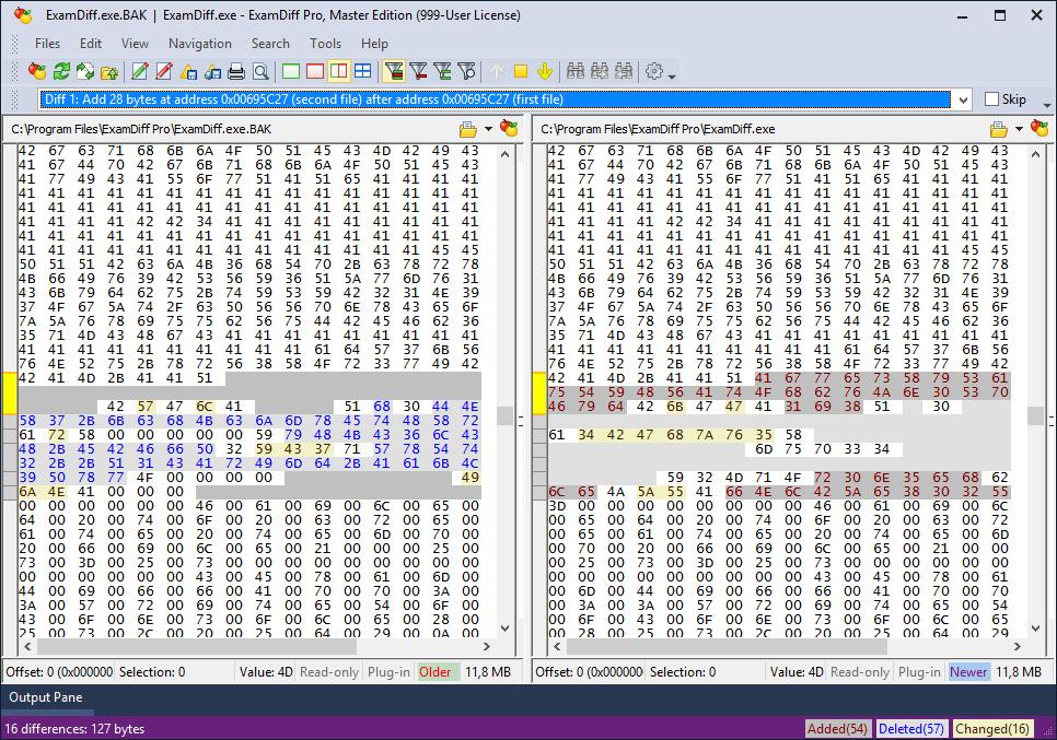 《ExamDiff Pro Master Edition 10.0.1.21》