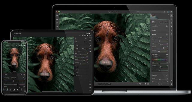 《Adobe Photoshop Lightroom 3.1.0 Win x64》