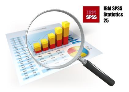 《IBM SPSS Statistics 25.0 FP002 (IF007)IF008》