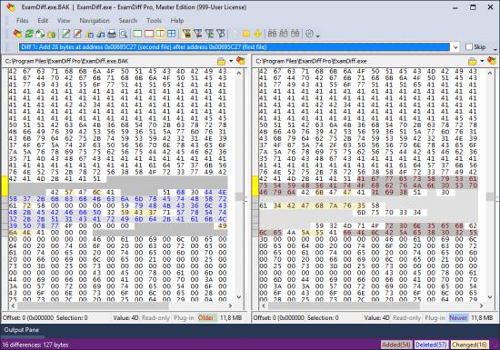 《ExamDiff Pro Master Edition 11.0.1.1》